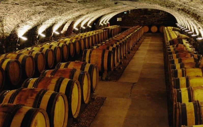 Музей вина в Боне