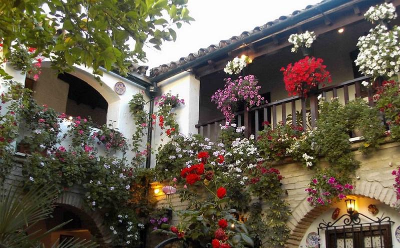 цветочная улица кордова