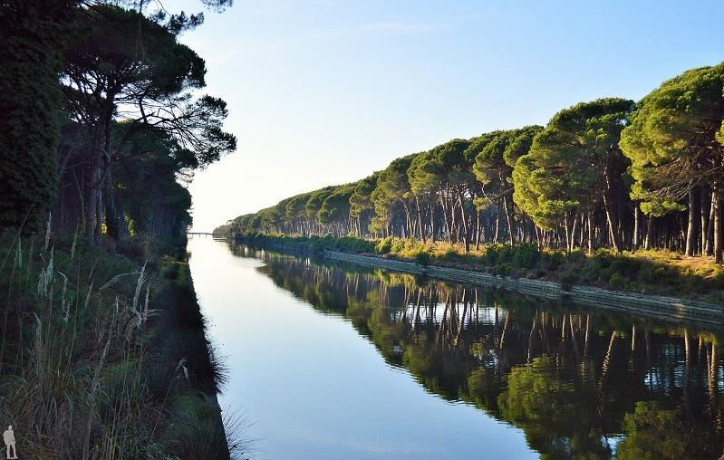природный парк мильярино сан-россоре массачукколи