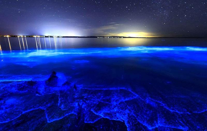 озеро гиппсленд