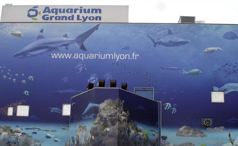 аквариум дю гран лион
