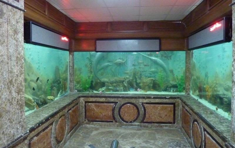 гидробиологический музей и аквариум
