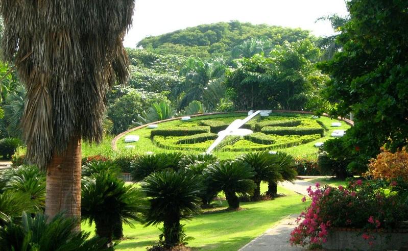 национальный ботанический сад доминиканской республики