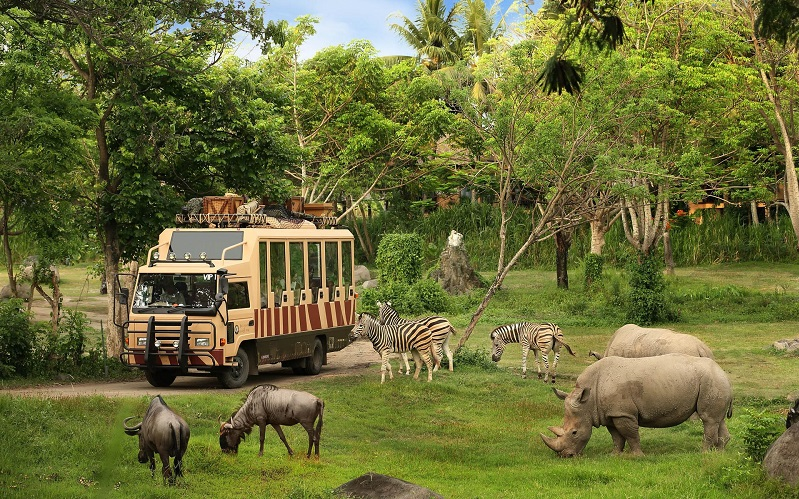 сафари парк бали