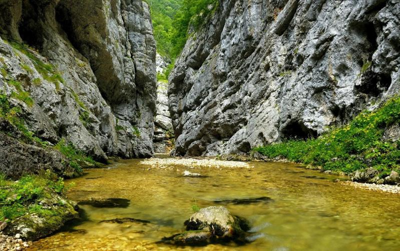 каньон реки цице