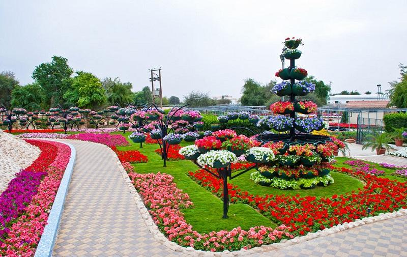 парк цветов в аль-айне