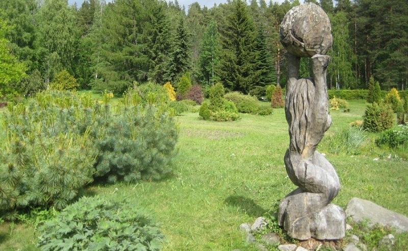 петрозаводский ботанический сад